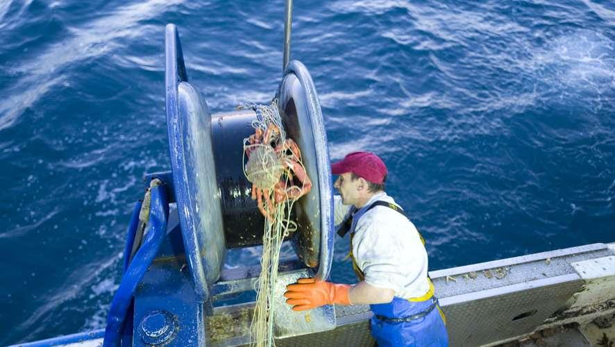 pêcheur qui remonte le filet avec les araignées de mer