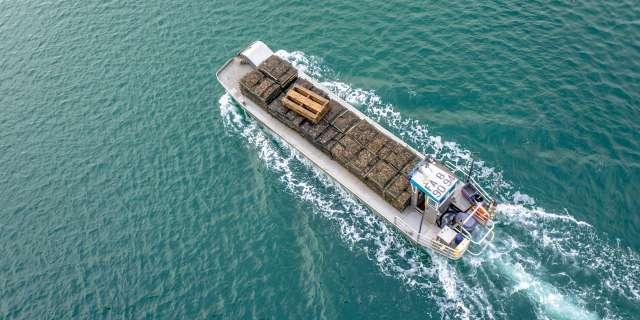 bateau avec des sacs d'huîtres sur la mer